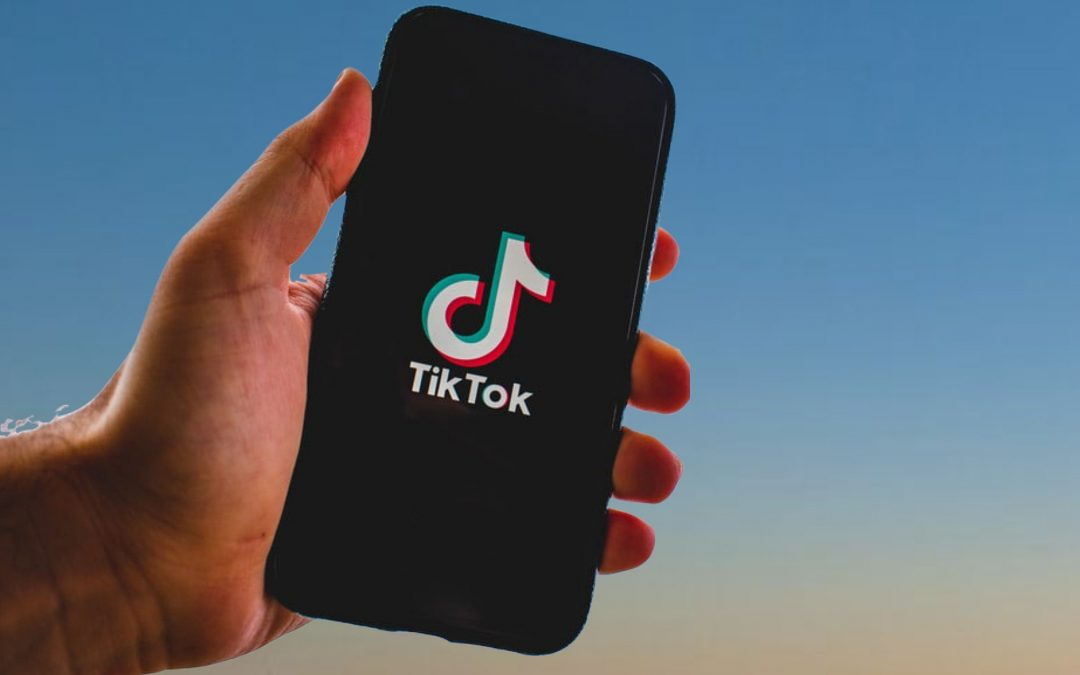 TikTok for home inspectors