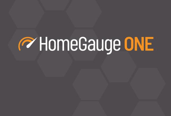 HomeGauge ONE